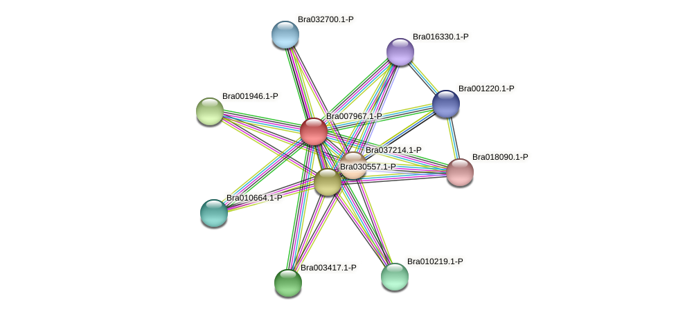 Bra007967 protein (Brassica rapa) - STRING interaction network