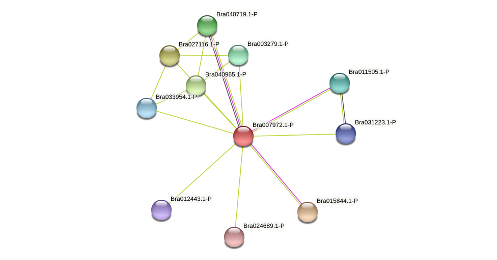 Bra007972 protein (Brassica rapa) - STRING interaction network