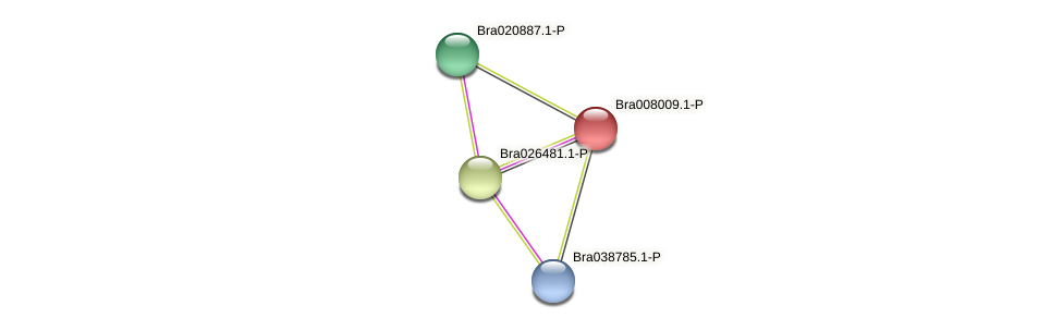 Bra008009 protein (Brassica rapa) - STRING interaction network