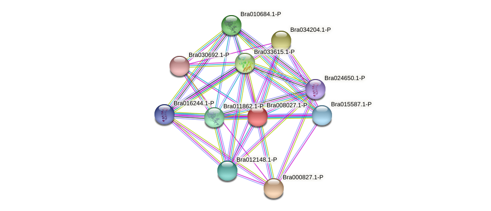 Bra008027 protein (Brassica rapa) - STRING interaction network