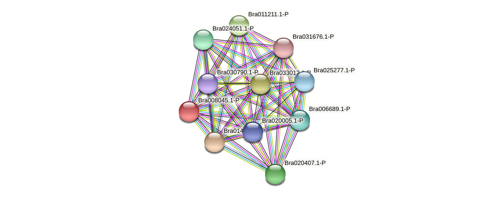 Bra008045 protein (Brassica rapa) - STRING interaction network