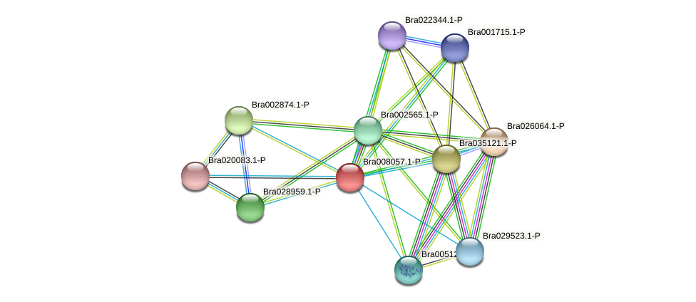 Bra008057 protein (Brassica rapa) - STRING interaction network