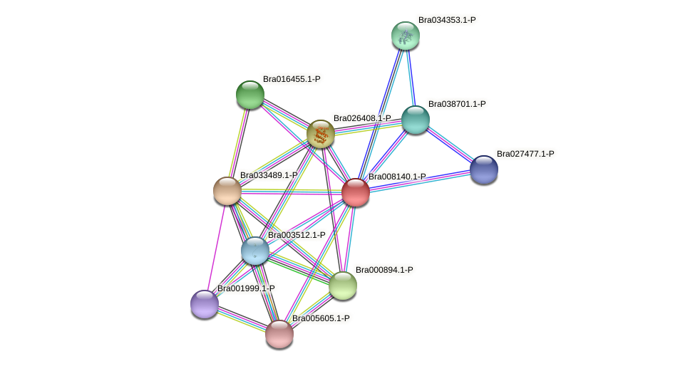 Bra008140 protein (Brassica rapa) - STRING interaction network