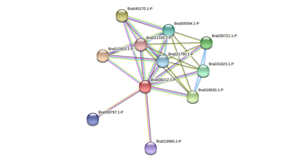 Bra008212 protein (Brassica rapa) - STRING interaction network