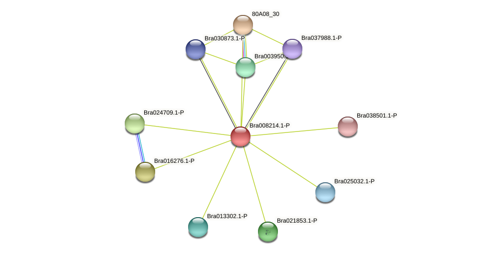 Bra008214 protein (Brassica rapa) - STRING interaction network