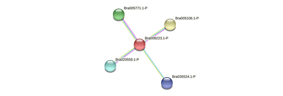 Bra008223 protein (Brassica rapa) - STRING interaction network
