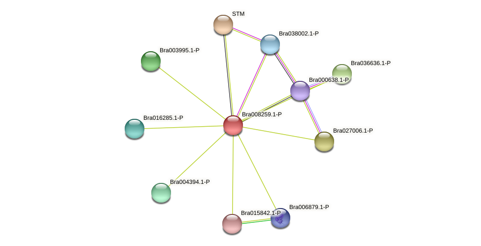Bra008259 protein (Brassica rapa) - STRING interaction network