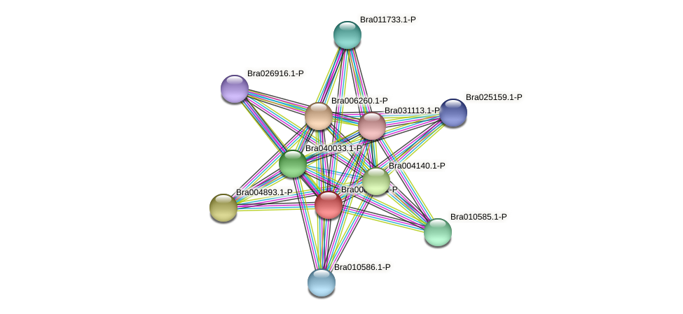 Bra008284 protein (Brassica rapa) - STRING interaction network
