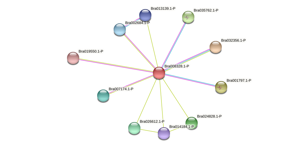 Bra008328 protein (Brassica rapa) - STRING interaction network