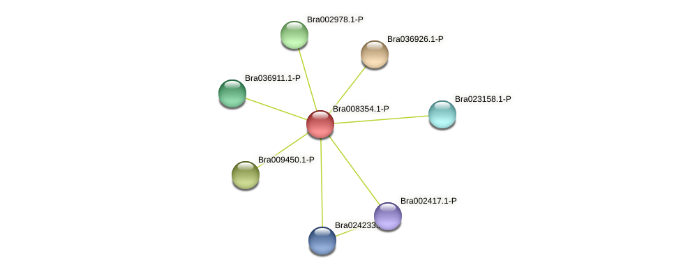 Bra008354 protein (Brassica rapa) - STRING interaction network