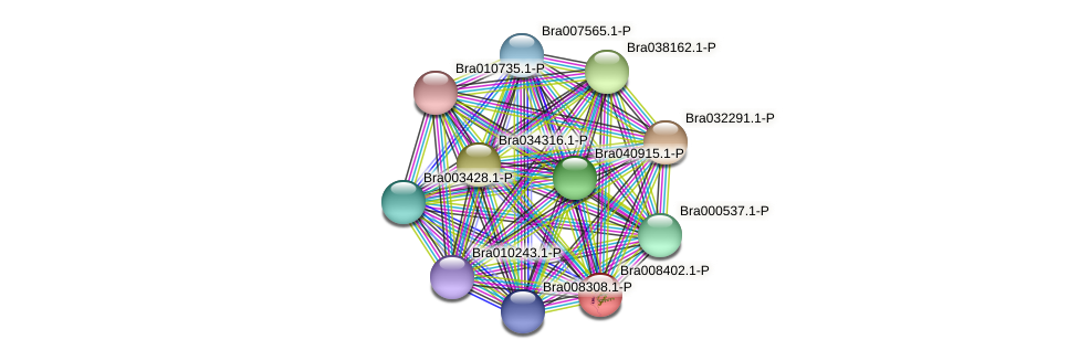 Bra008402 protein (Brassica rapa) - STRING interaction network