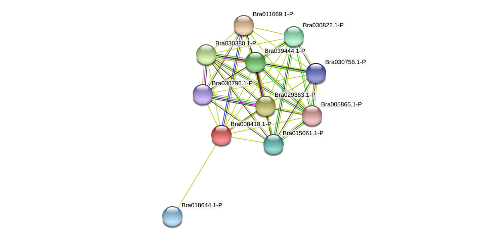 Bra008418 protein (Brassica rapa) - STRING interaction network