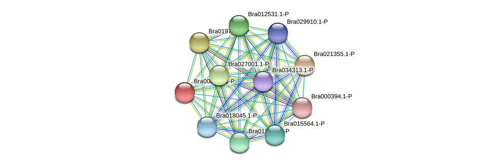 Bra008434 protein (Brassica rapa) - STRING interaction network