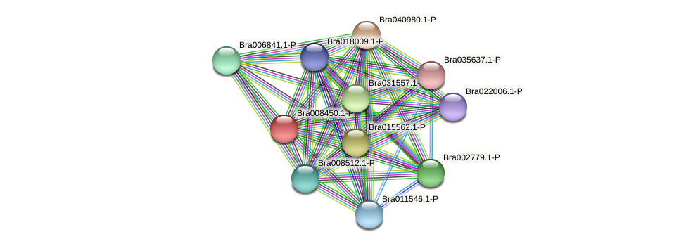 Bra008450 protein (Brassica rapa) - STRING interaction network