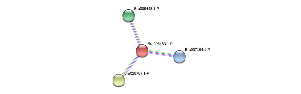 Bra008483 protein (Brassica rapa) - STRING interaction network