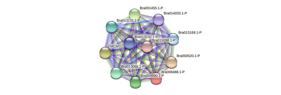 Bra008488 protein (Brassica rapa) - STRING interaction network