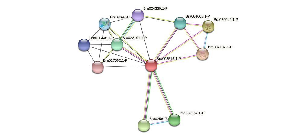 Bra008513 protein (Brassica rapa) - STRING interaction network