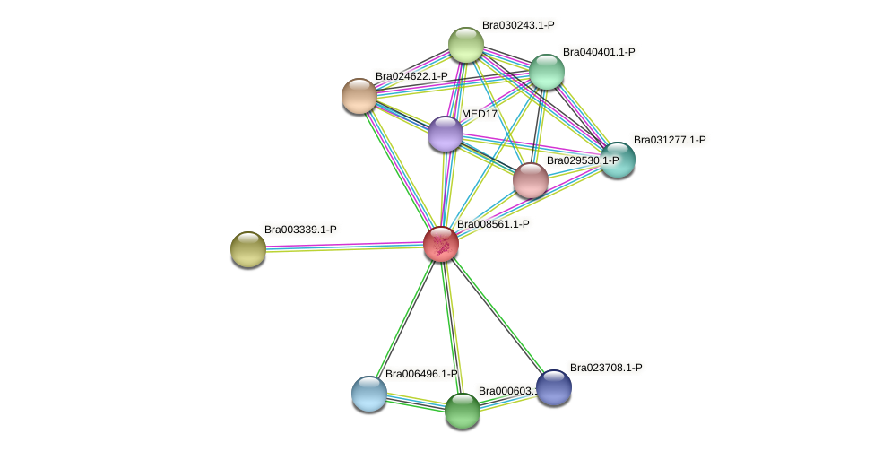Bra008561 protein (Brassica rapa) - STRING interaction network