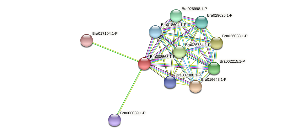 Bra008568 protein (Brassica rapa) - STRING interaction network
