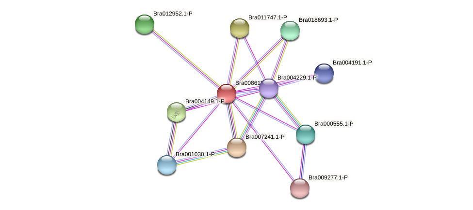 Bra008611 protein (Brassica rapa) - STRING interaction network
