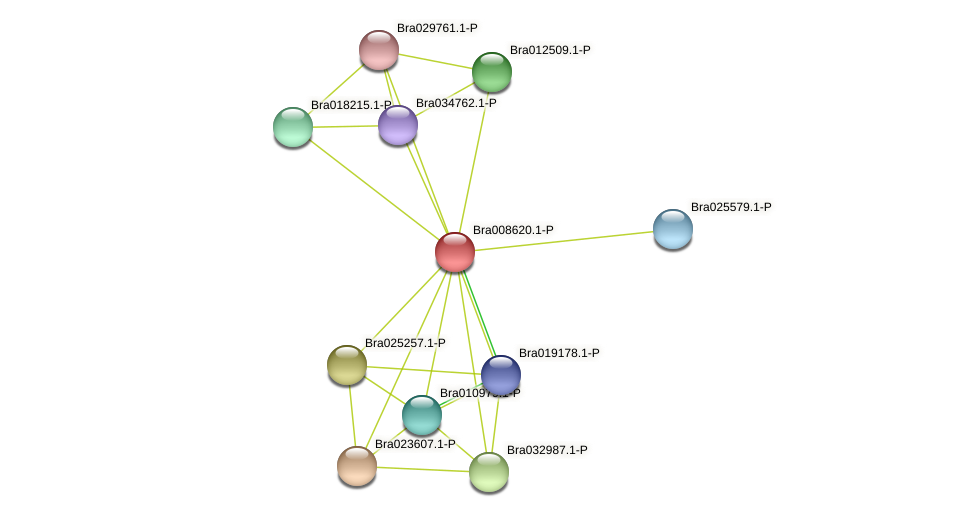 Bra008620 protein (Brassica rapa) - STRING interaction network