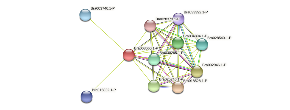 Bra008660 protein (Brassica rapa) - STRING interaction network