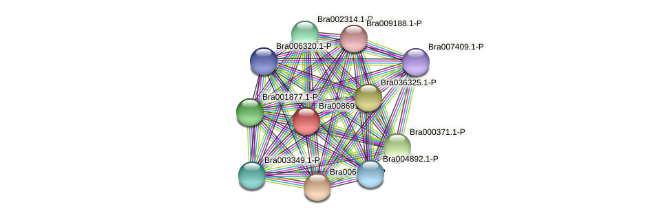 Bra008691 protein (Brassica rapa) - STRING interaction network