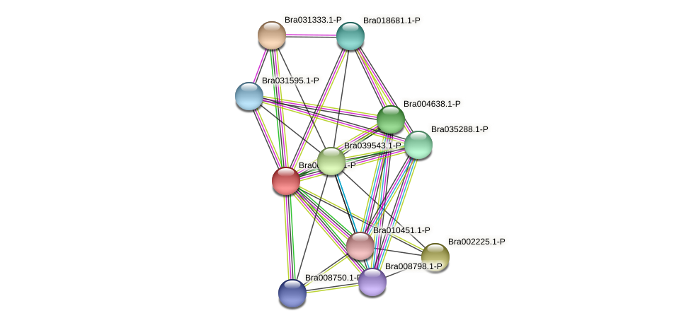 Bra008701 protein (Brassica rapa) - STRING interaction network