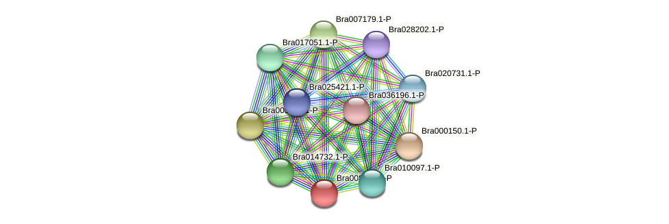 Bra008735 protein (Brassica rapa) - STRING interaction network