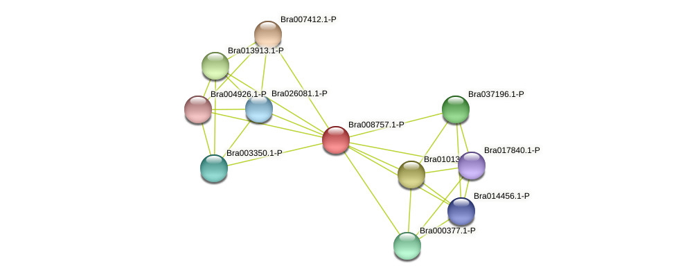 Bra008757 protein (Brassica rapa) - STRING interaction network