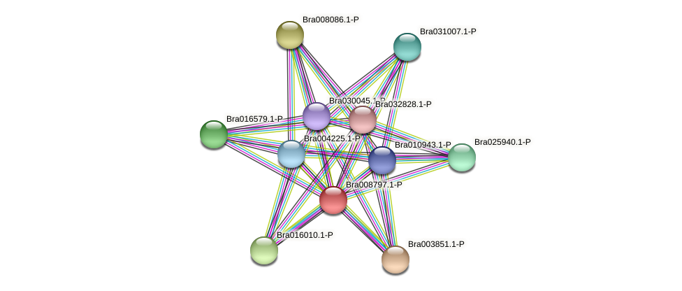 Bra008797 protein (Brassica rapa) - STRING interaction network