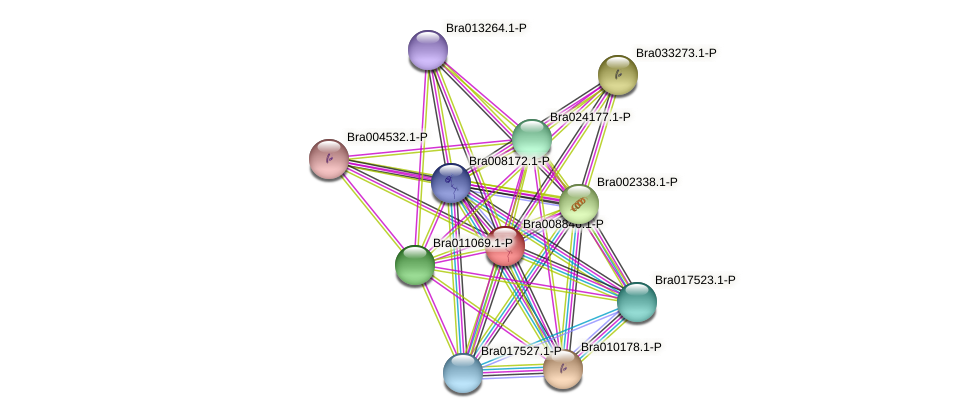 Bra008846 protein (Brassica rapa) - STRING interaction network