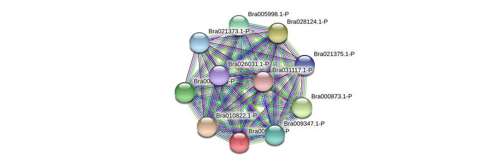 Bra008938 protein (Brassica rapa) - STRING interaction network