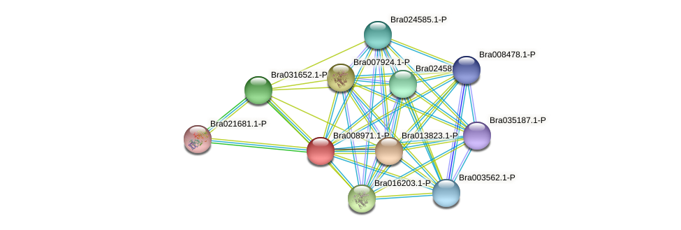 Bra008971 protein (Brassica rapa) - STRING interaction network