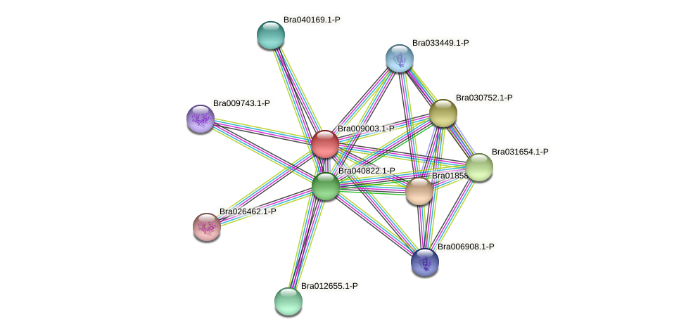 Bra009003 protein (Brassica rapa) - STRING interaction network