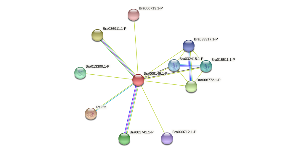 Bra009149 protein (Brassica rapa) - STRING interaction network