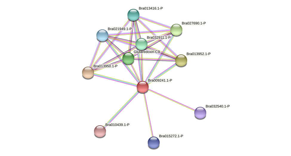 Bra009241 protein (Brassica rapa) - STRING interaction network