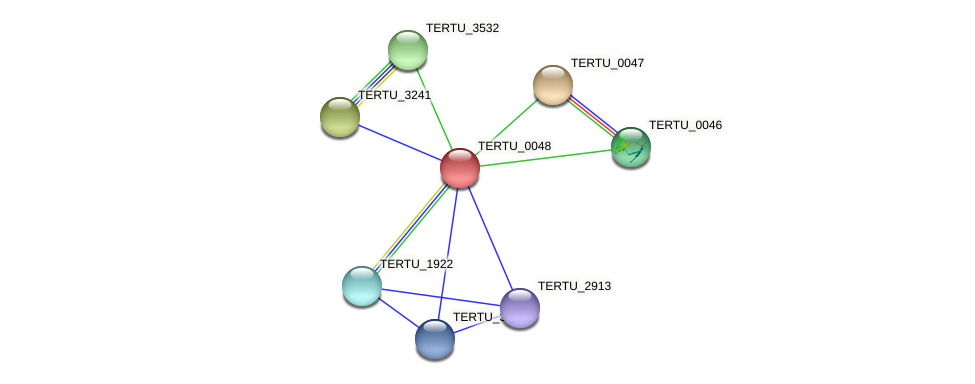 TERTU_0048 protein (Teredinibacter turnerae) - STRING interaction network
