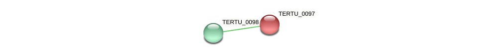 TERTU_0097 protein (Teredinibacter turnerae) - STRING interaction network