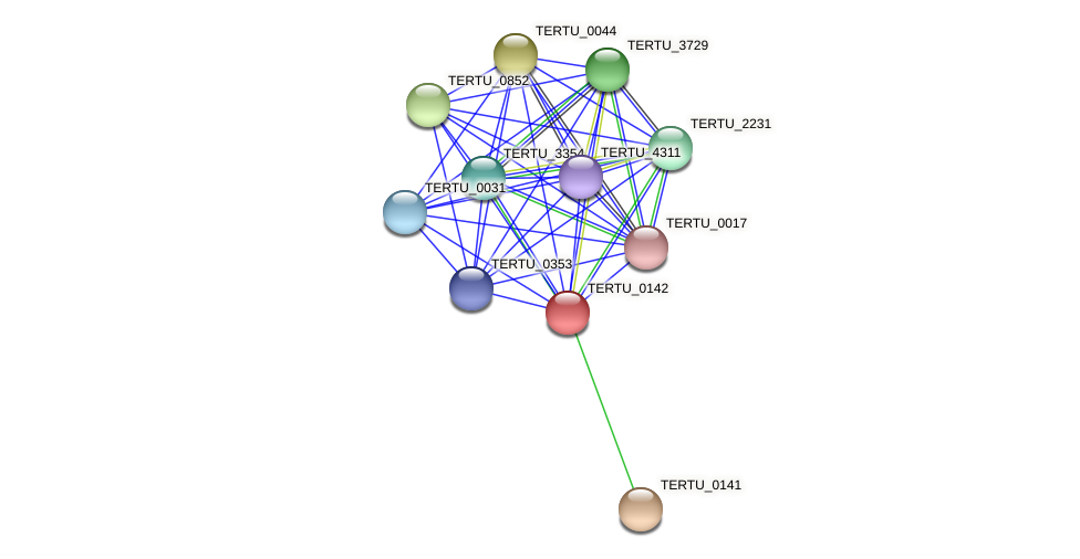 TERTU_0142 protein (Teredinibacter turnerae T7901) - STRING interaction network