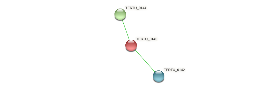 TERTU_0143 protein (Teredinibacter turnerae) - STRING interaction network