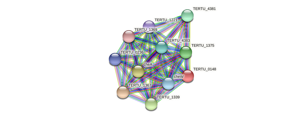 TERTU_0148 protein (Teredinibacter turnerae T7901) - STRING interaction network