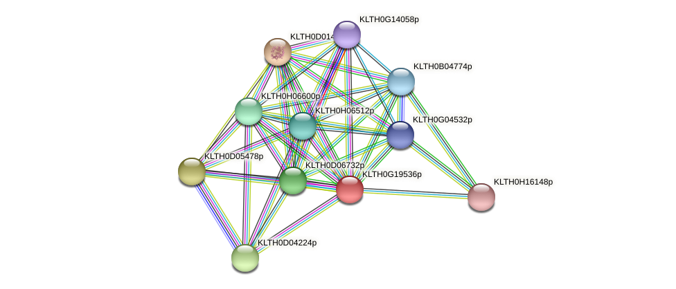 XP_002555876.1 protein (Lachancea thermotolerans) - STRING interaction network