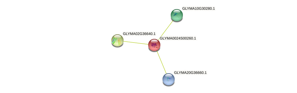 GLYMA0024S00260.1 protein (Glycine max) - STRING interaction network