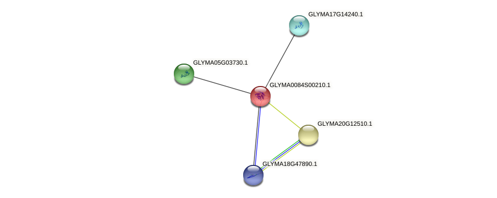 GLYMA0084S00210.1 protein (Glycine max) - STRING interaction network