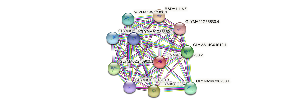 GLYMA0121S00230.2 protein (Glycine max) - STRING interaction network