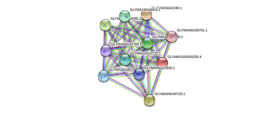 GLYMA0169S00200.3 protein (Glycine max) - STRING interaction network