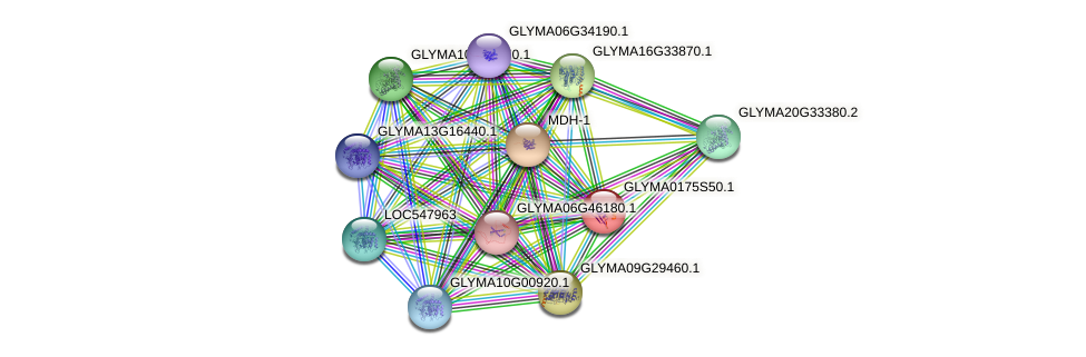 GLYMA0175S50.1 protein (Glycine max) - STRING interaction network