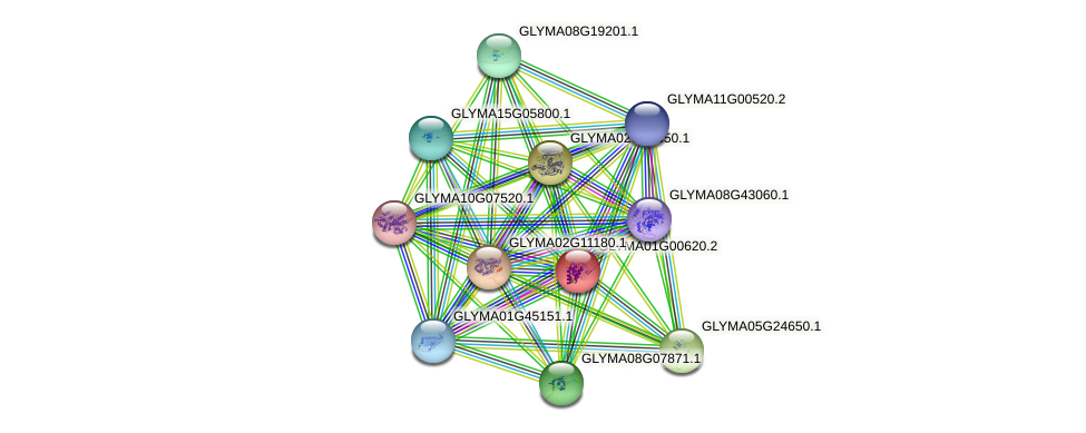 GLYMA01G00620.2 protein (Glycine max) - STRING interaction network