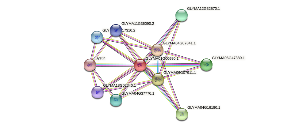 GLYMA01G00690.1 protein (Glycine max) - STRING interaction network
